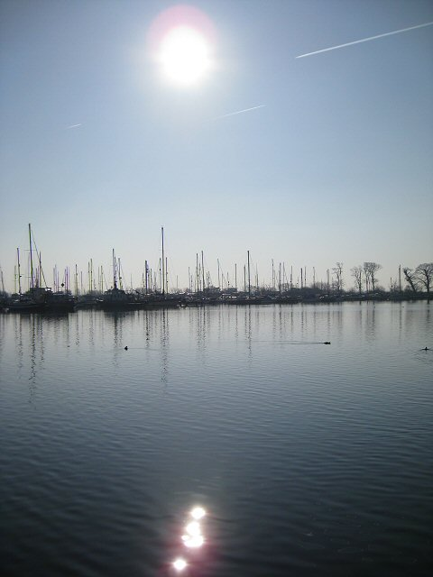 Masts at Glasson