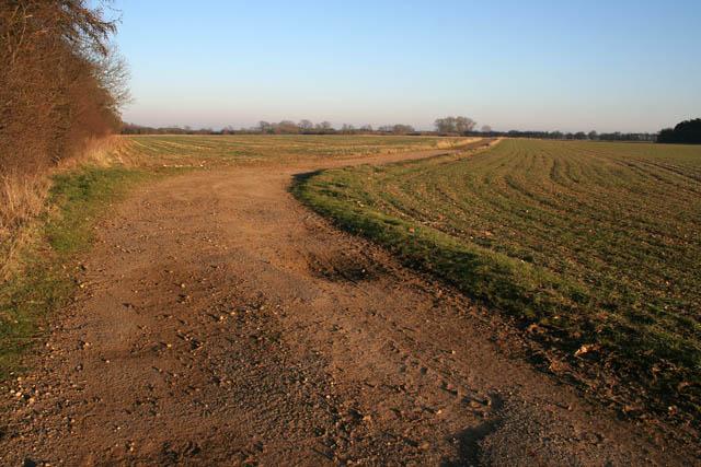 Farm track near Saltby Airfield