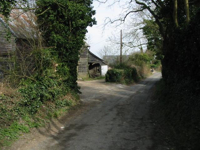Looking NE along Chapel Lane