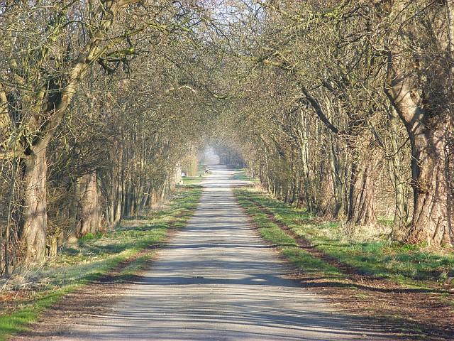 Farm road, Lockinge