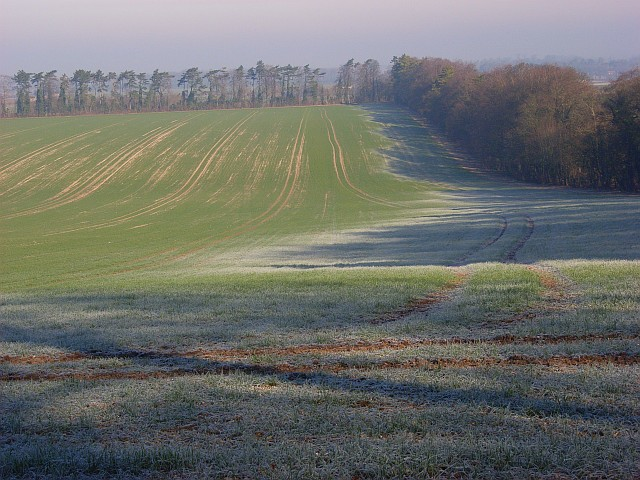 Farmland, Lockinge