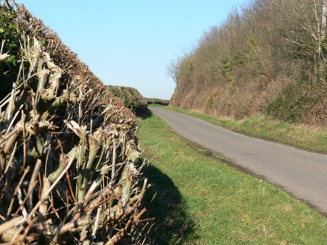 Desford Lane near Peckleton