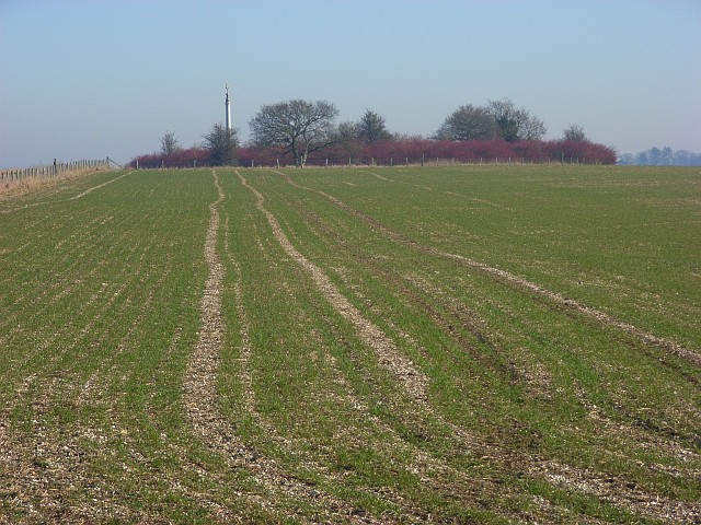 Betterton Down