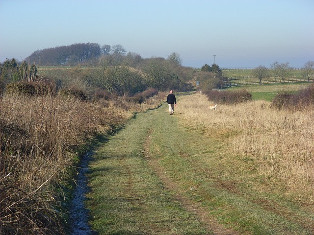 The Ridgeway near Wantage