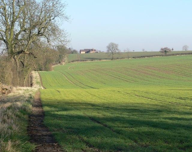 Footpath to Kirby Muxloe