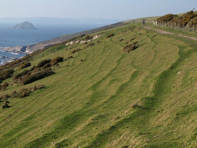 Terracettes or sheeptrods, The Warren