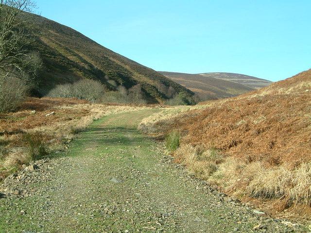 Stalkers Track by Burn of Arnbarrow