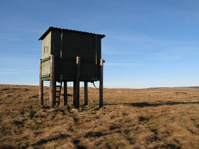 Shooting cabin on Windy Hill