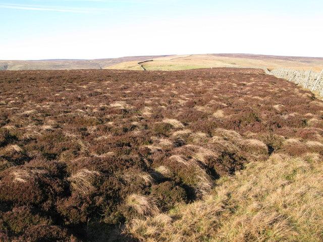 Moorland above Scarsike Head
