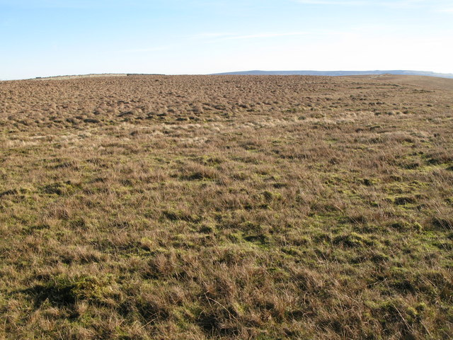 The southern slopes of Windy Hill