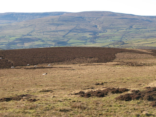 Moorland near Scarsike Head (2)