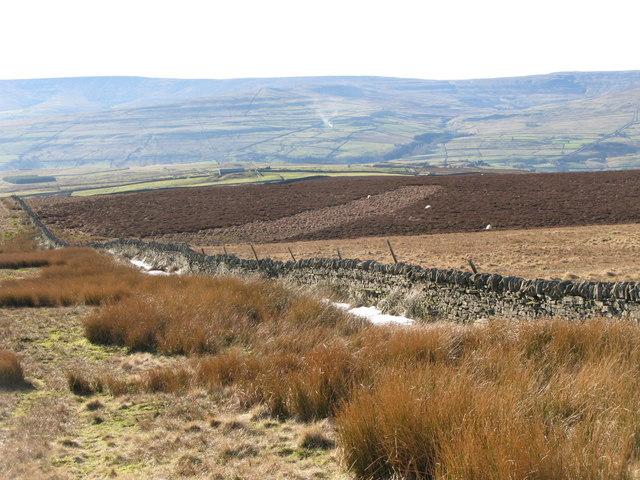 Moorland near Scarsike Head (3)