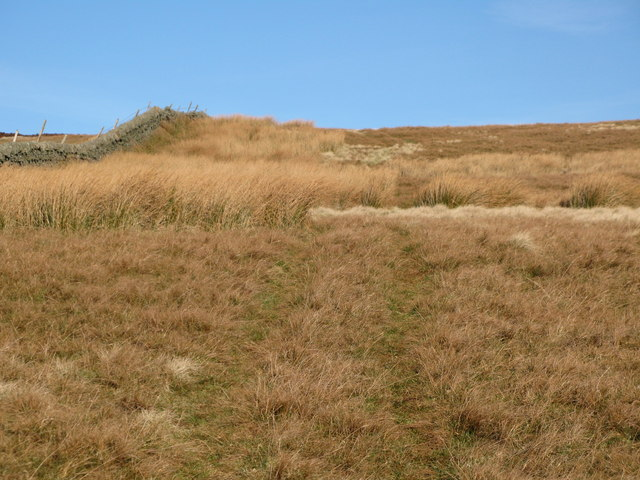 The western end of Windy Hill
