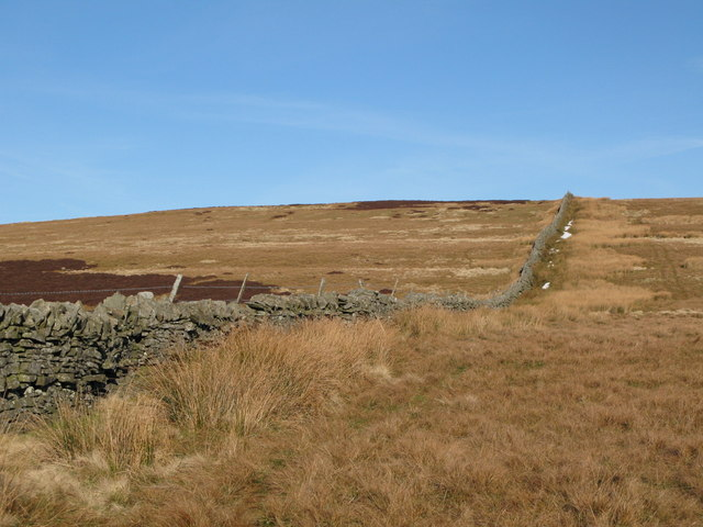 The western end of Windy Hill (2)