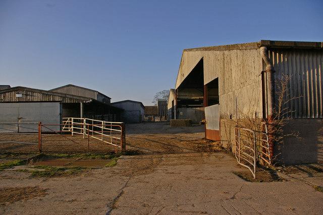 Lady Halton Farm