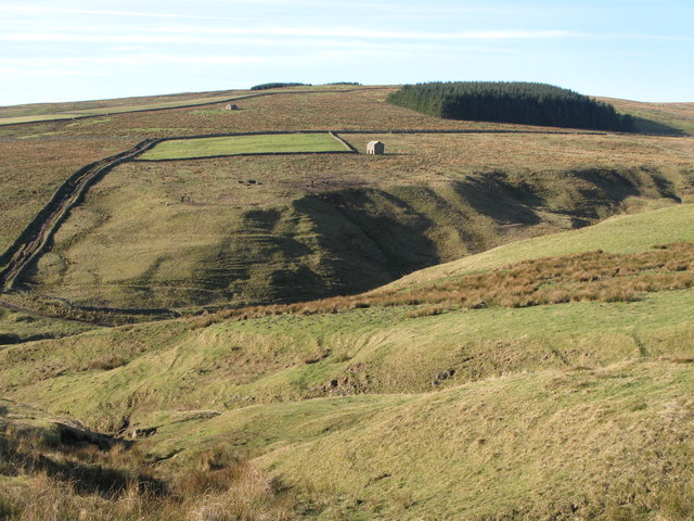 The cleugh of Middlehope Burn (2)