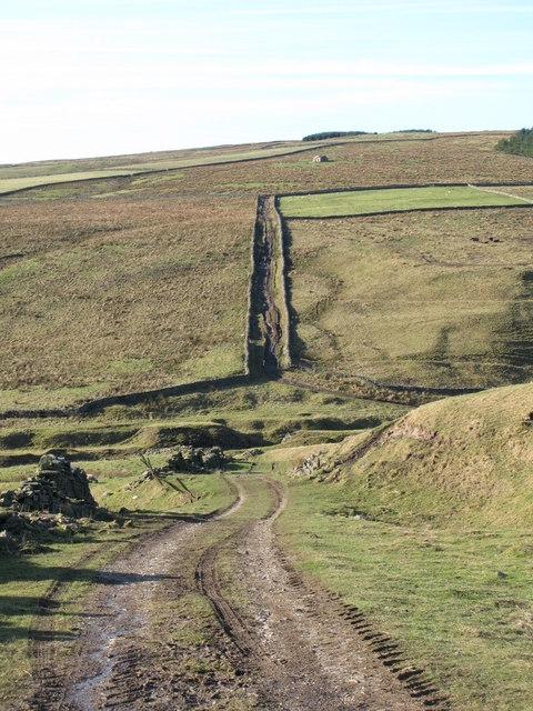 Track across Middlehope Burn