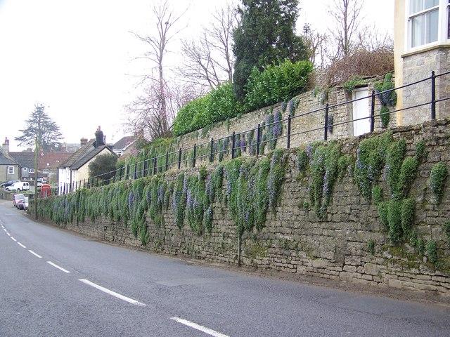 Street Scene, Stalbridge