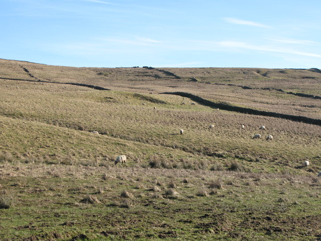 Rough pastures below Crook's Altar