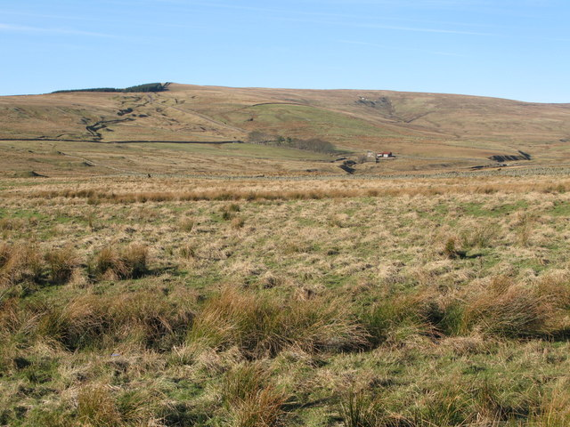 The valley of Middlehope Burn (3)