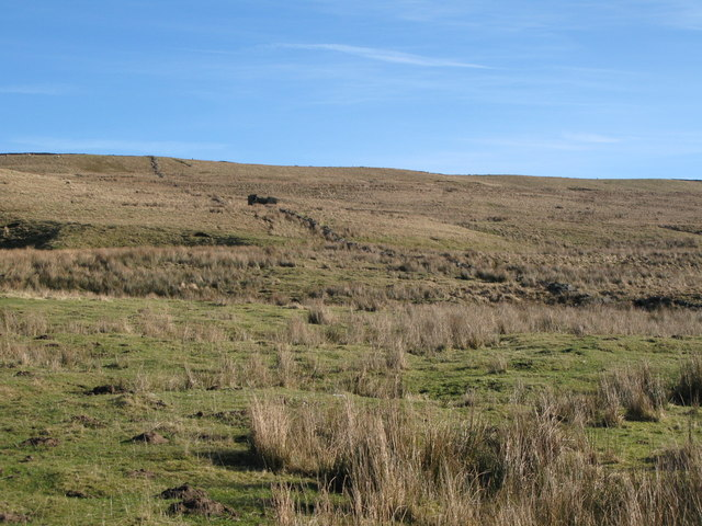 Rough pastures below Scarsike Head