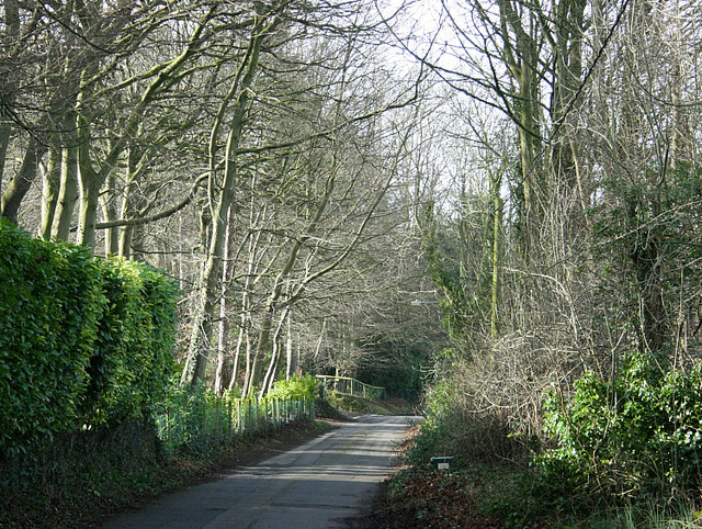2008 : Beech Road, Box Hill