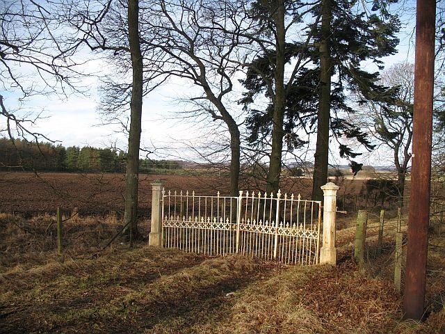 Decaying gates