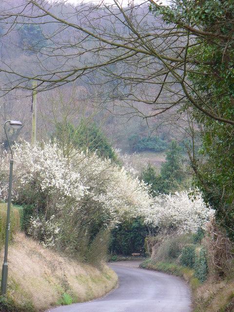 Halfpenny Lane