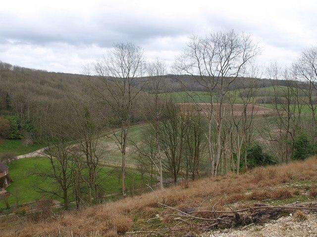 Green Hill Plantation from Horse Park Plantation