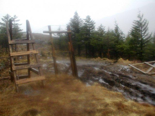 Stile over Deer Fence, Glen Dessary Forest