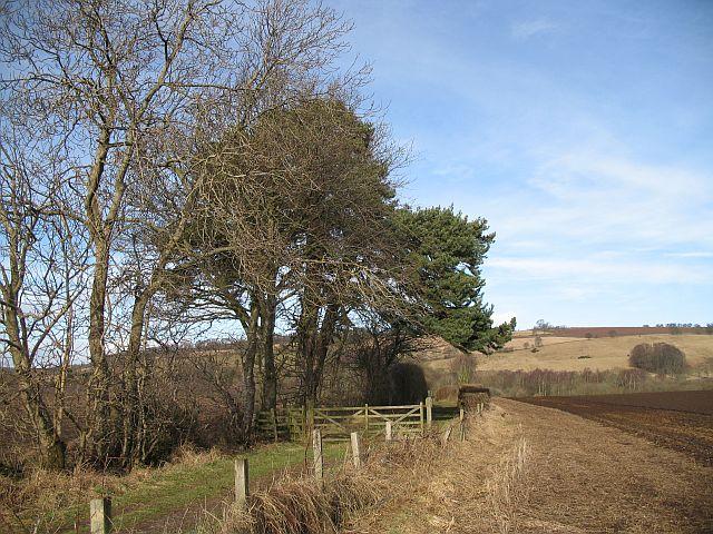 Farm road, Ardblair