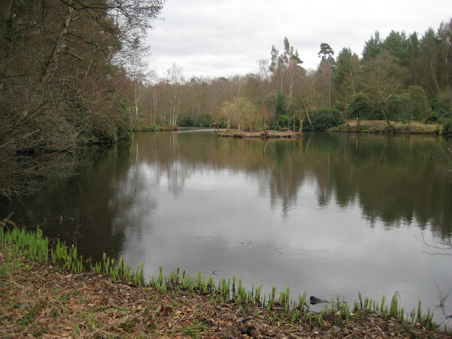 Witley: Sweetwater Pond