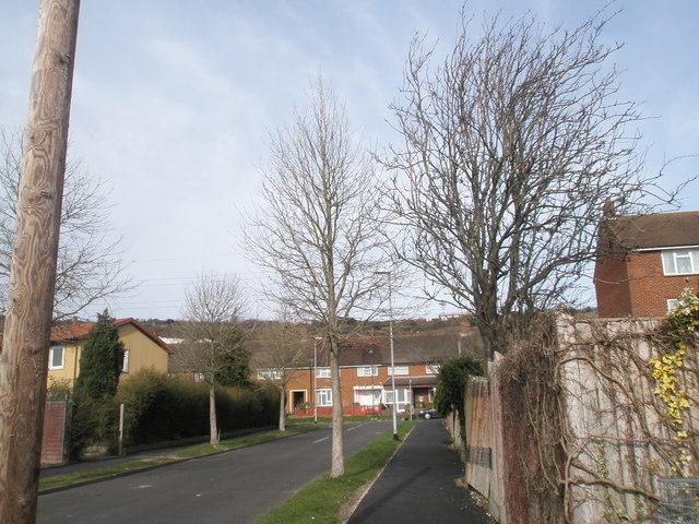 Tarleton Road, Paulsgrove