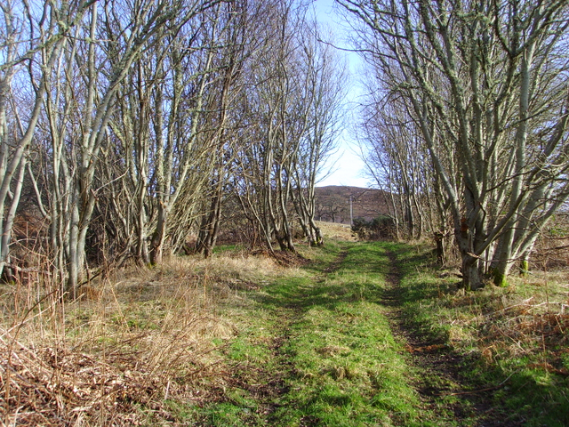 Track near the A839
