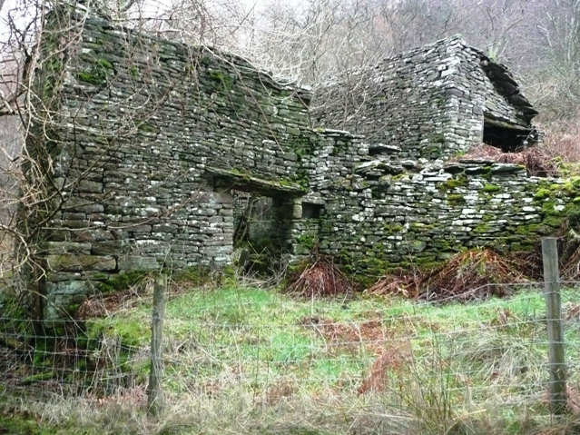 Ruined farmstead