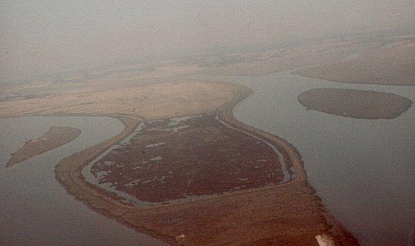 Langenhoe Marshes 1981