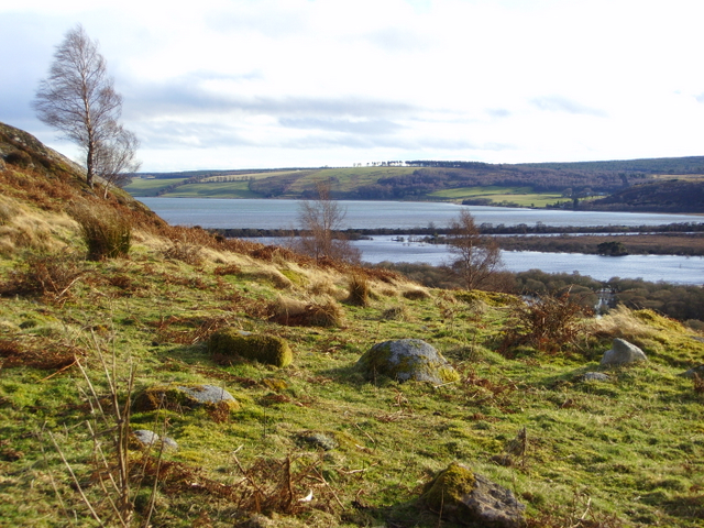 Looking towards Loch Fleet