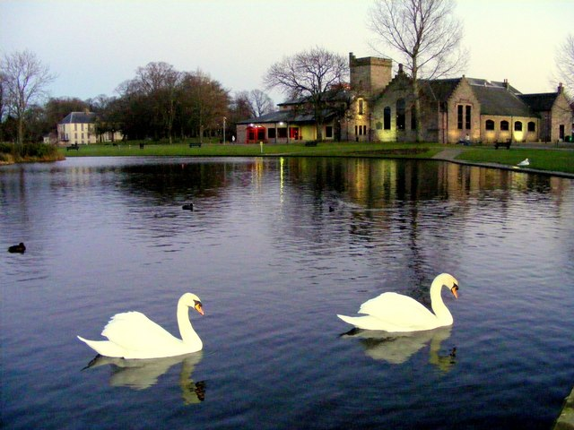 Elgin Library and Swans on the pool