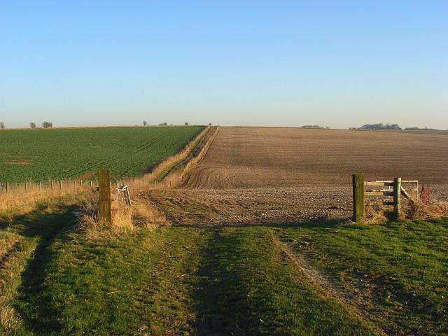 Farmland on the Lambourn Downs