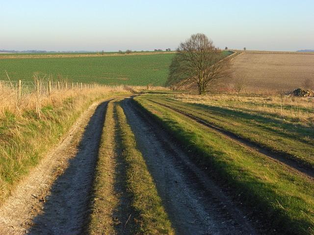 Farm track, Lambourn Downs