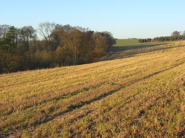 Eastmanton Down