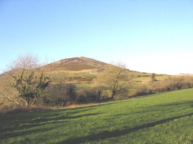 Farmland above the Erch valley at Penfras Uchaf