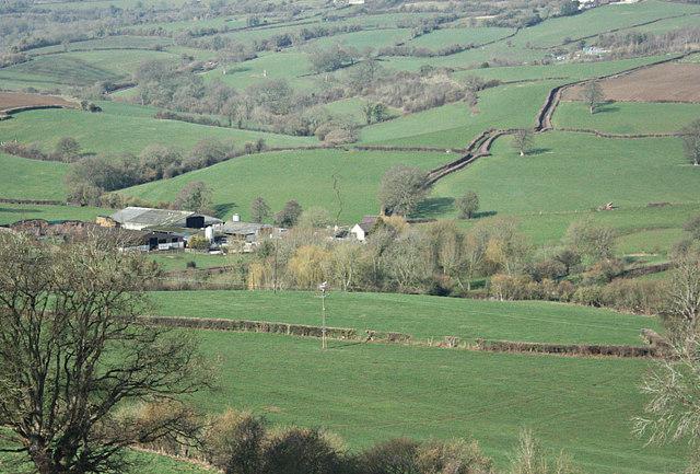 2008 : Drewett's Mill