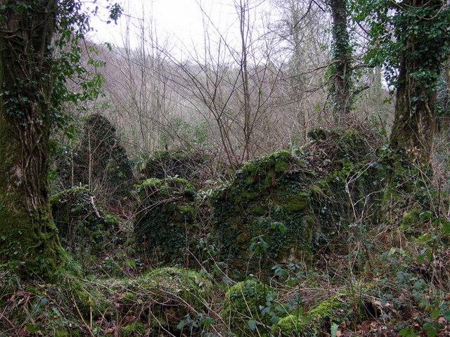 Mossy ruins
