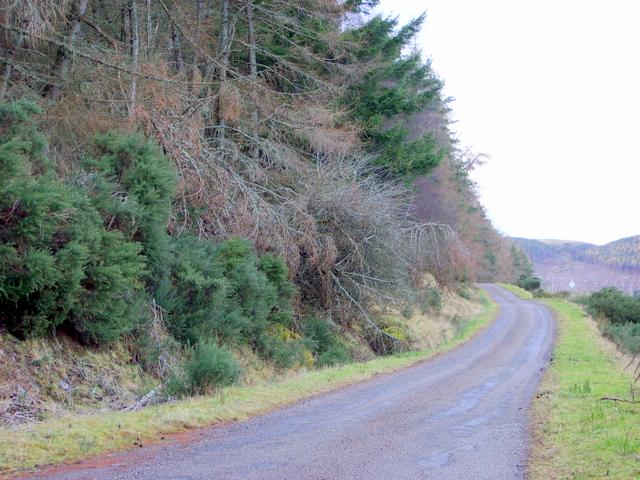Road to Eiden