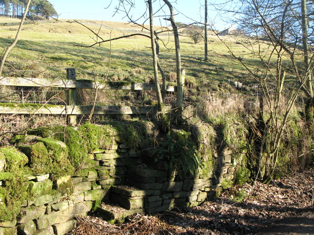 Steps built into drystone wall