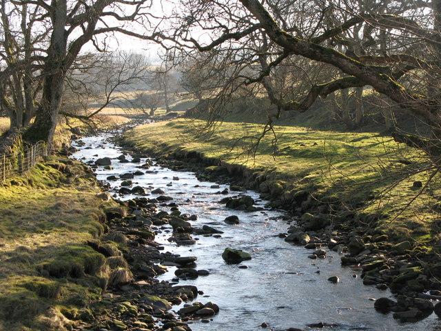 The River West Allen (2)