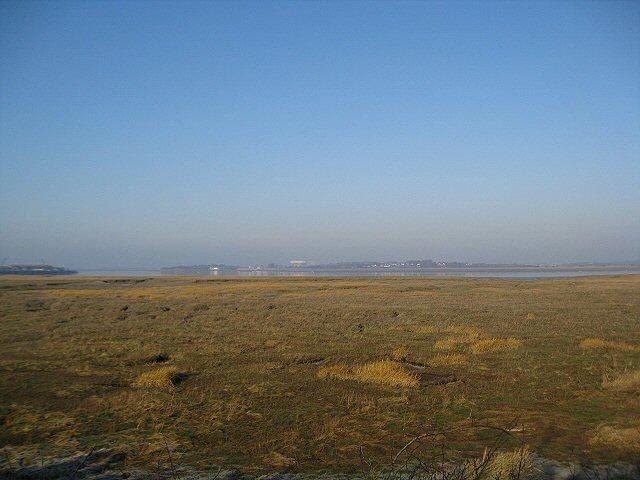 Salt Marsh in the Lune Estuary