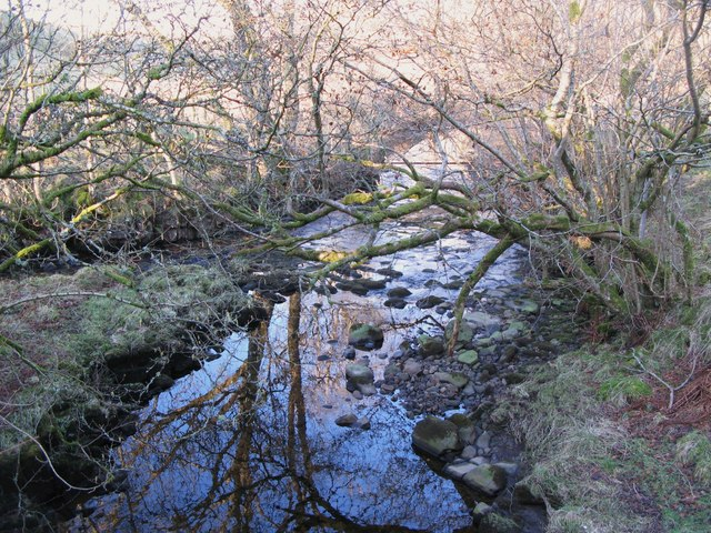 The confluence of Mohope Burn and Wellhope Burn