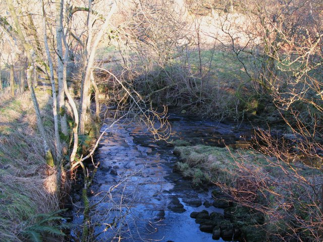 The confluence of Mohope Burn and Wellhope Burn (2)